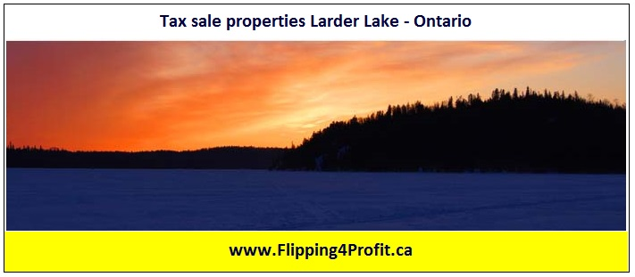Tax sale properties Larder Lake - Ontario